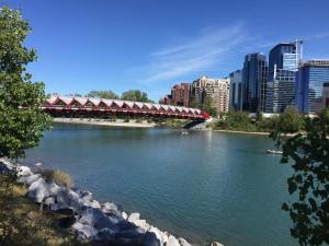 Peace Bridge-Day